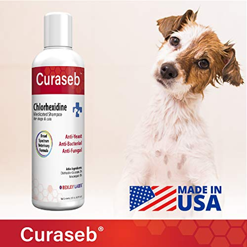 Curaseb Antifungal & Antibacterial Chlorhexidine Shampoo for Dog & Cats - Treats Yeast Infections, Ringworm, Pyoderma & Skin Allergies – Broad Spectrum Veterinary Formula (16 oz)