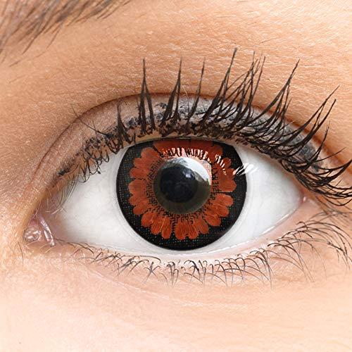 Dunkelbraune Farbige Kontaktlinsen Pretty Hazel Dunkelbraun Sehr Stark Deckende SILIKON COMFORT NEUHEIT von GLAMLENS + Behälter - 1 Paar (2 Stück) - DIA 14.00 mm Ohne Stärke 0.00 Dioptrien