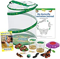 Insect Lore Deluxe Butterfly Garden with 2 Live Cups