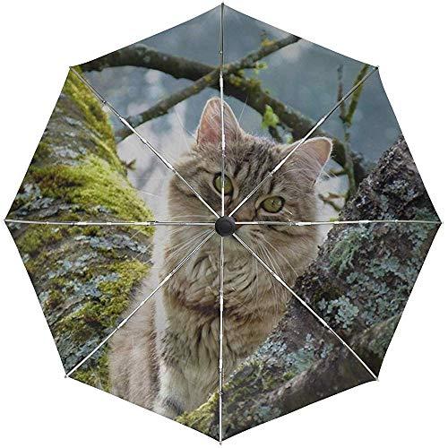 Automatischer Regenschirm-Kratzbaum-Gras-Moos, das die Pelzreise bequem winddichtes wasserdichtes faltendes Auto offenes nahes sitzt