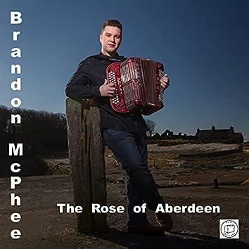 The Rose of Aberdeen