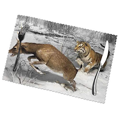 Affordable shop Natural History Museum - Juego de 6 manteles individuales para...