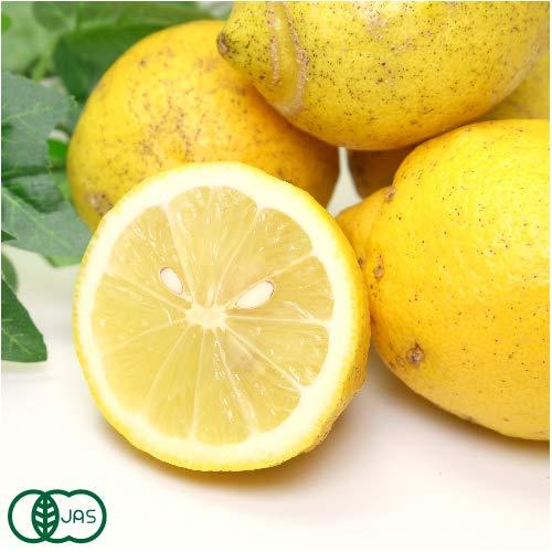 【A・Bサイズ混合】 有機 レモン 10kg 有機JAS (神奈川県 山下農園) 産地直送 ふるさと21