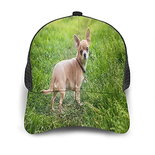 Minalo Gorra de Beisbol Espalda de Malla Senderismo al Aire Libre Sombrero Deportivo,Perro Chihuahua de Pelo Liso en un Paseo,Gorra de Sol de Enfriamiento para Hombres Mujeres