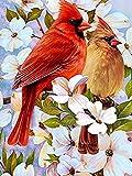 Kit de pintura de diamantes para adultos Pájaro rojo flor blanca Kit de Pintura de Diamantes 5D para Manualidades Punto de Cruz Diamante DIY Pintura al oleo por numeros 30x40cm