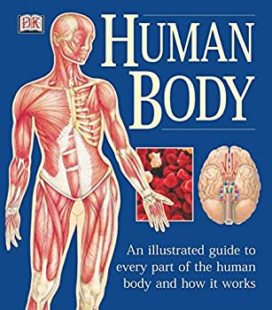 Human Body  An Illustrated Guide to Every Part of the Human Body and How It Works