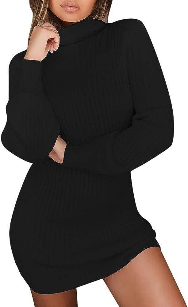 Women Turtleneck Winter Sweater Dress Soft Knit Stretchable Elasticity Sweatshirts Causal Pullover Dress - Limsea