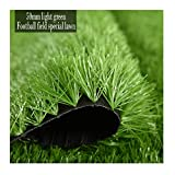 TLMYDD Erba Artificiale del Giardino dell'altezza del Mucchio da 50 mm, Adatto per Il Tetto di Calcio del Campo di Calcio Decorazione del Tappetino (2x3m) Prato Artificiale