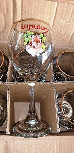 Lote de 6 vasos de cerveza Lupulus VAP de 25 cl – RARE y MAGNIFICA