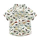 Kimocat Baby Boys Summer Short Long Sleeve Cartoon Dinosaur Printed Shirt Romper Pant (Shirt, 110 for 3-4T)