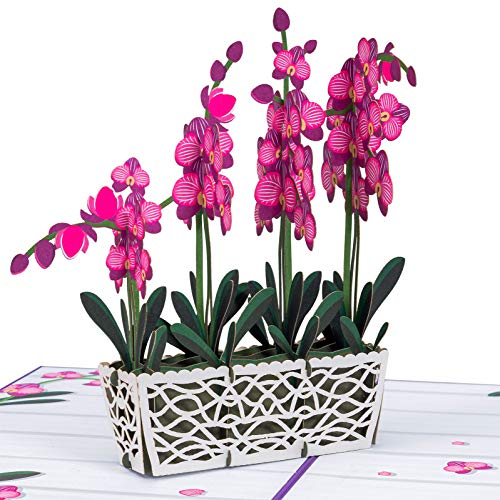 Paper Love Orchids Pop Up Card, Handmade 3D Popup Greeting Cards for Mothers Day, Valentines Day,...