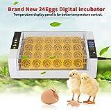 Egg Incubator,24 Eggs Incubator With Automatic Egg Turning Auto Temperature Control Digital Automatic Chicken Chick Duck Hatcher Egg Incubator
