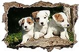 Hundewelpen Hund Baby Wandtattoo Wandsticker Wandaufkleber D0754 Größe 70 cm x 110 cm