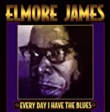 Songtexte von Elmore James - Every Day I Have the Blues