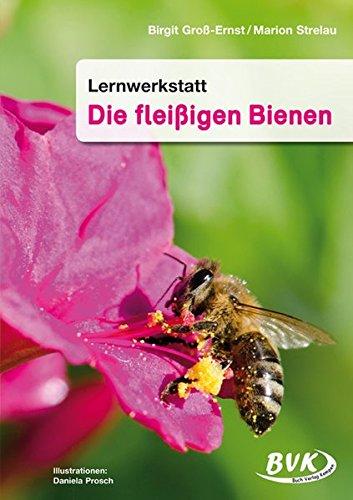Lernwerkstatt, Die fleißigen Bienen