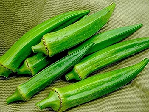 CHTING 50Pcs Okra Seeds Non GMO Green...