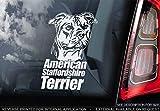 Sticker International American Staffordshire Terrier - Adhesivo Coche - Perro Firmar Ventana, Parachoques Pegatina Regalo - V002 - Blanco/Claro - Interno Marcha Atrás Estampado, 160x100mm