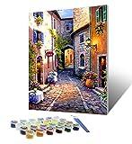 Tyrkuiy Kits de pintura para bricolaje por números, pintura al óleo, dibujo, pinturas acrílicas, lienzo con 3 pinceles de 16 x 20 pulgadas (con marco)