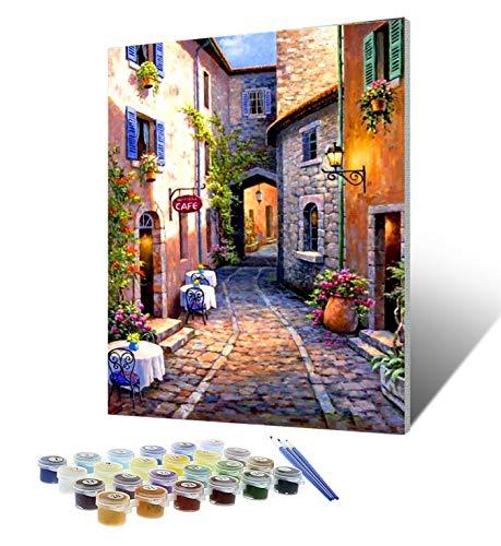 Tyrkuiy Kits de pintura para bricolaje por números, pintura al óleo, dibujo, pinturas acrílicas, lienzo con 3 pinceles de 16 x 20 pulgadas (con marco) ⭐