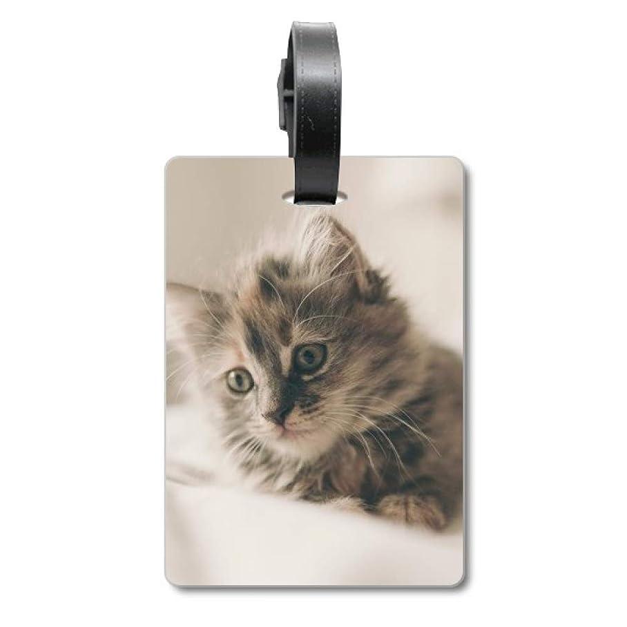 大破グリル救出動物のキティ灰色の猫の写真 旅行カバンのタグ旅行者の識別標識