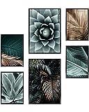 Heimlich Cuadros Decorativos - SIN Marcos -Decoración Colgante para Paredes de Sala, Dormitorios y Cocina - Arte Mural - 2 x A3 & 4 x A4-30x42 & 21x30 | » Agave Palm Golde «