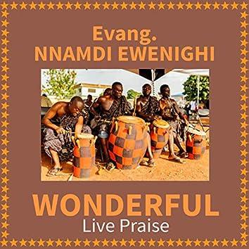 Wonderful Live Praise (Live)