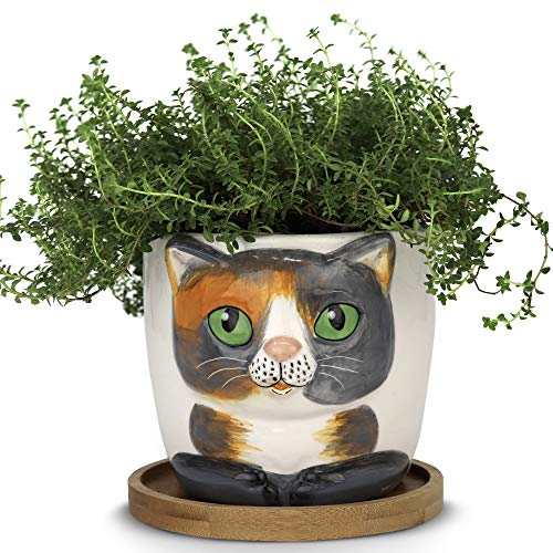Window Garden – New Large Kitty Pot Barney – Purrfect for Indoor Live House Plants Like Succulents Flowers and Herbs Top Quality Super Cute Planter Gift for Cat Lovers Office Christmas
