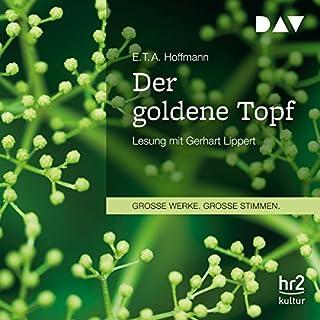 Der goldene Topf Titelbild