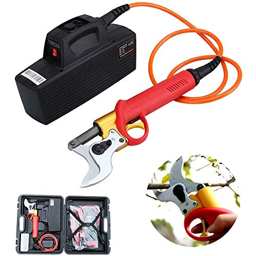 ZFAME Sécateur électrique, coupé Rechargeable Peut 40mm en Dessous de Coupe d'arbres fruitiers pour bonsaïs, Jardin, des Arbres, des Fleurs (sécateur)