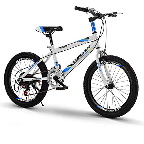 GUOCAO 20Inch Variable Speed Mountain Bike, Comfortable Saddle, Nonslip Pedal, Kids Bike, Safe and Sensitive Brake Folding Bike (Color : Blue, Size : A)