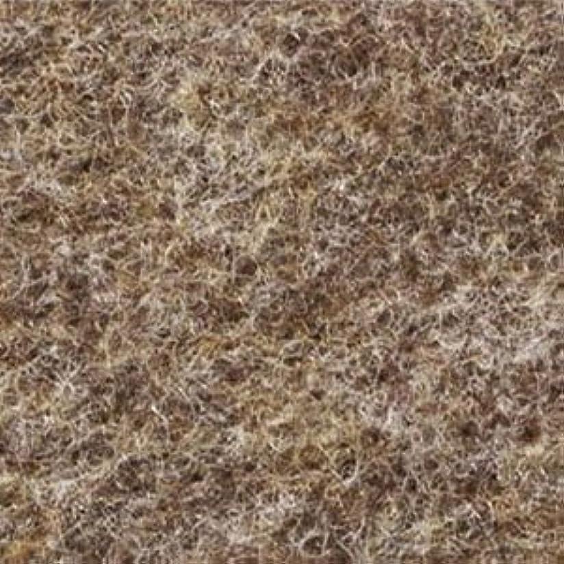 スカリー汚れるワークショップパンチカーペット サンゲツ SペットECOII Hフロア S-156-S シングル巾 91cm巾 (巾なりカット)【長さ1m x 注文数】