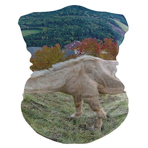 Bolimao Schutzmaske für Pferde auf dem Berg, atmungsaktiv, multifunktional, waschbar, Halstuch für Sonne, UV- und Staub, Wind
