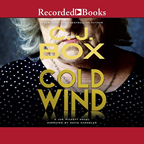 Cold Wind audiobook cover art