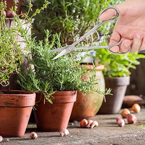 【 】Cortador de ramas, herramientas de bonsái de jardín de modelado de...
