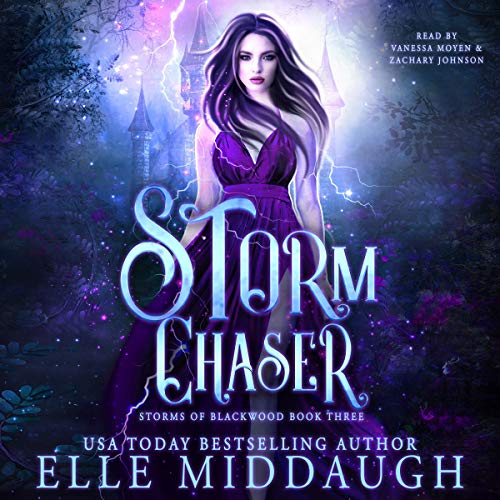 Storm Chaser Audiobook By Elle Middaugh cover art