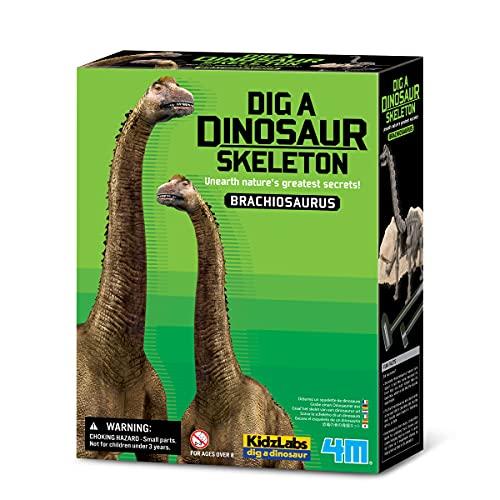 Dam - 4M - 5603237 - Construction et Maquette - Animaux - Kidzlabs - deterre-Ton-Dinosaure - Brachiosaurus