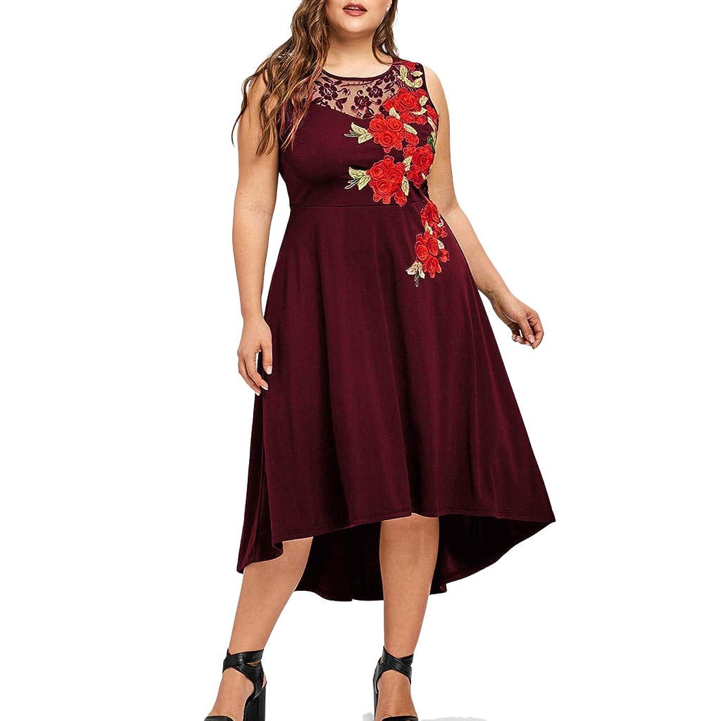 NREALY Vestido Womens Plus Size O-Neck Appliques Zipper Perspective Sleeveless Mesh Dress