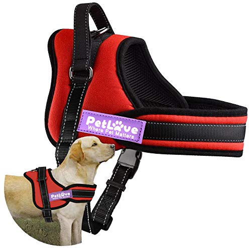 PetLove [Upgraded Version] Dog Harness, Soft Leash Padded No Pull Dog Harness with All Kinds of Size