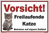 kleberio - Vorsicht Freilaufende Katze! Betreten auf eigene Gefahr! - Schild Kunststoff Warnschild Hinweisschild 20 x 30 cm