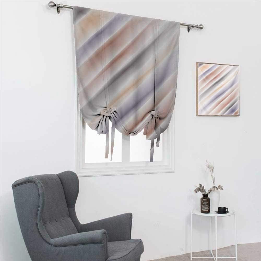 Roman Window Shades Department store NEW before selling ☆ Modern Hazy Room Darkening Art