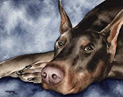 doberman artwork