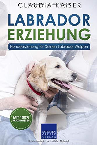 Labrador Erziehung: Hundeerziehung für Labrador Welpen (Labrador Band, Band 1)