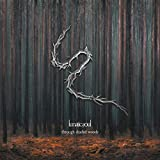 Songtexte von Lunatic Soul - Through Shaded Woods