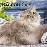 Ragdoll Cats - Ragdoll-Katzen 2021 - 18-Monatskalender: Original BrownTrout-Kalender [Mehrsprachig] [Kalender]