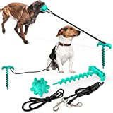 Multipurpose Outdoor Dog Chew Toys with Dog Leash and Dog Tie Out Stake, Dog Toys for Aggressive Chewers Large Breed,Yard and Camping