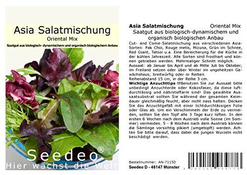 Seedeo® Asia Salatmischung Oriental Mix 500 Samen BIO