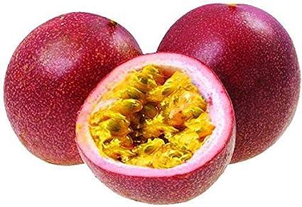 Semillas de maracuyá 20 piezas de zarigüeya roja Pasiflora Edulis planta viva para el hogar/jardín/exterior/patio/plantación agrícola