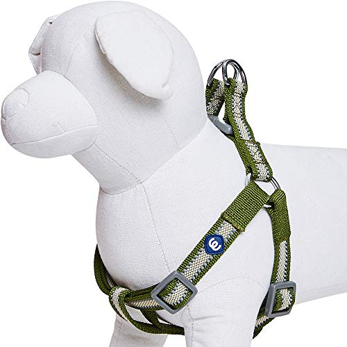 Blueberry Pet Essentials Step-in Reflective Back to Basics Dog Harness, Dark Olive, Chest Girth 20