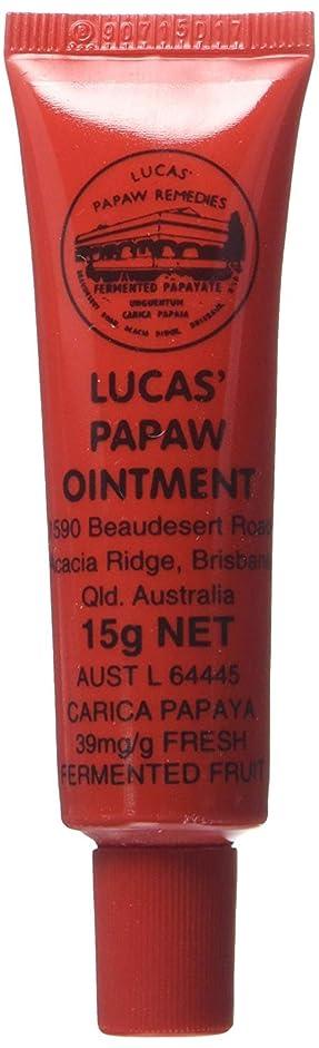 賠償フィラデルフィア最愛のLUCAS' PAPAW OINTMENT リップ アプリケータータイプ 15g
