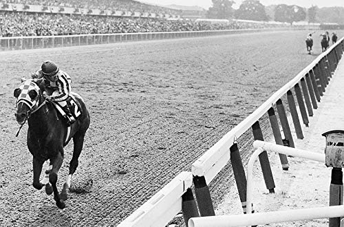 Secretariat Wins at Belmont Wall Art Horse Racing S Artwork Vivid Imagery Laminated Poster Print-20 Inch by 30 Inch Laminated Poster With Bright Colors And Vivid Imagery